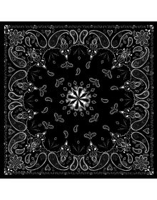 Zanhead Bandana 22X22 Black Paisley