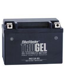 BikeMaster TruGel Battery YT12A-BS