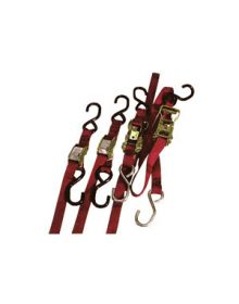 Ancra Quad Pack Tiedown Red